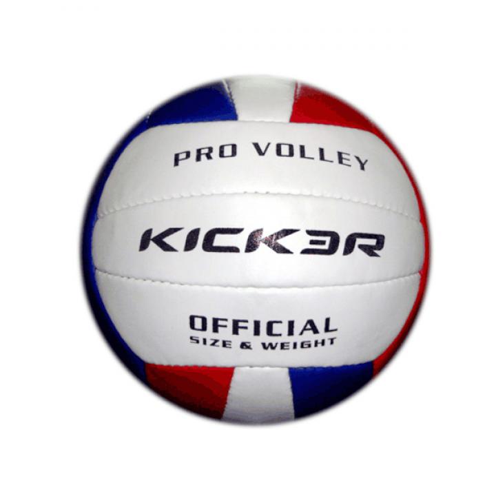 Мяч волейбольный Kicker/Larsen Vega