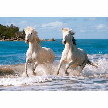 Пазл Белая лошадь 1000 деталей Castorland C-102433